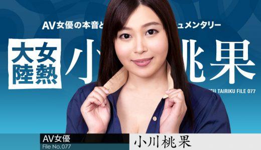 女熱大陸 File.077 小川桃果【カリビアンコム】
